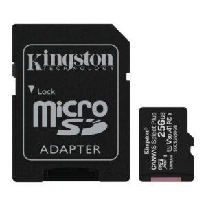 Kingston 256GB Micro Card