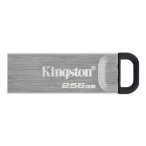 Kingston 256GB Memory Pen